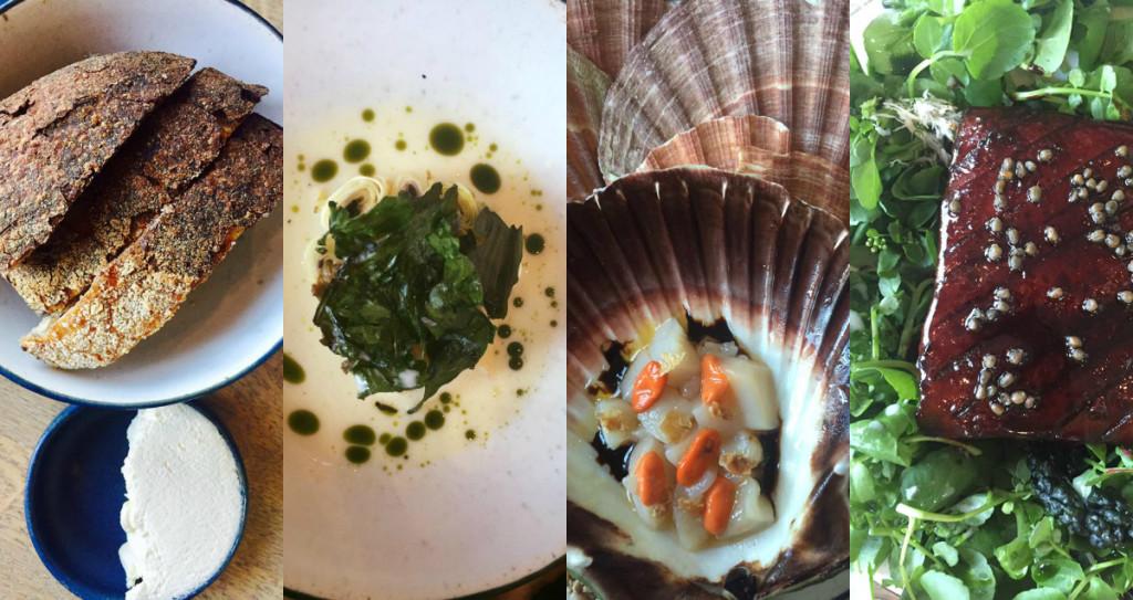 Μπορείς να καμαρώνεις σαν Έλληνας: στην κουζίνα του 108 δουλεύει μια ελληνίδα στο τμήμα του ψωμιού, εκπληκτικό ψωμί φτιαγμένο με προζύμι και τραγανή κόρα και σερβιρισμένο με διπλό- χτυπημένη κρέμα βουτύρου! / Σέλερυ σε σος παλαιωμένου δανέζικου τυριού / Όστρακα από τη Νορβηγία