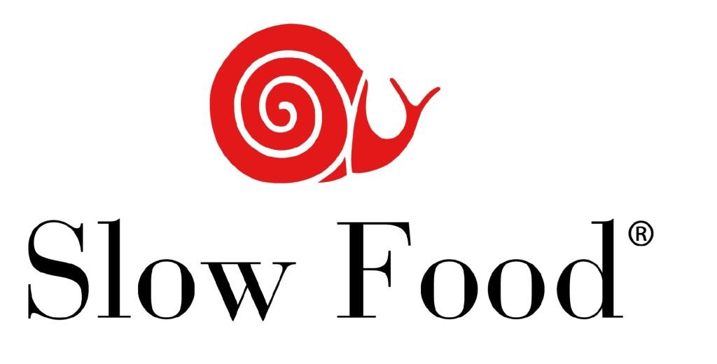 logo-1024x520